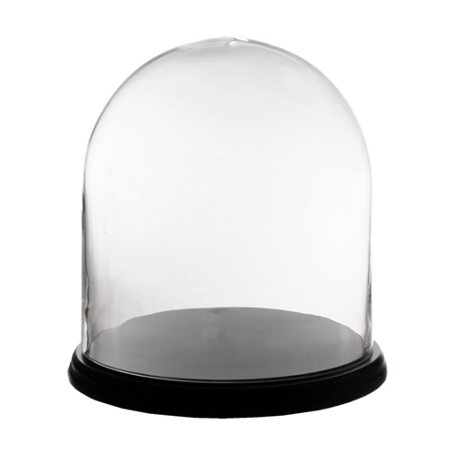 "Cloches with Black Wood Base.H-13"", Wholesale Pack of 2 pcs"
