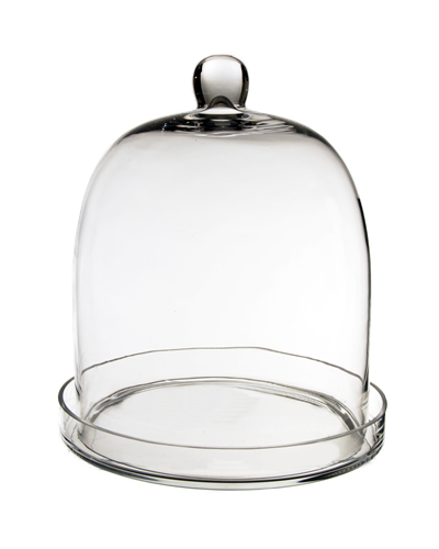 "Glass Bell Cloches with Knob & Tray. H-11"", Wholesale Pack of 2 pcs"