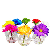 "Glass Bud Vase. H-3"", Pack of 4 sets"