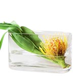 "Jumbo Rectangle Vase. H-8"", Pack of 4 pcs"